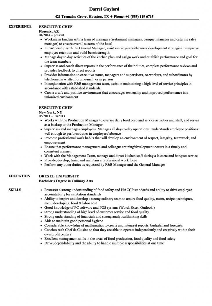 executive chef resume samples  velvet jobs head chef contract template