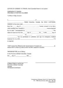our example of custody agreement letter 29920 notarized custody notarized child custody agreement sample