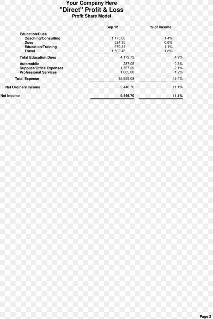 sample income statement estate agent real estate investing template real estate agent profit and loss statement template example