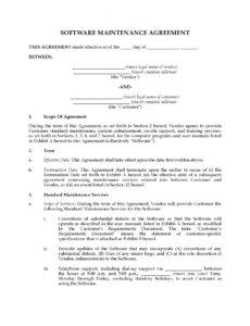 Costum Software Service Contract Template Excel