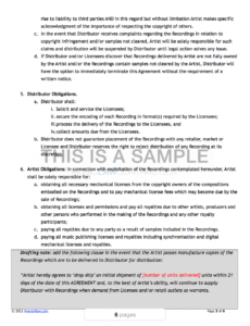 Editable Music Distribution Contract Template Word Example