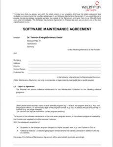 Editable Software Service Contract Template Word Example