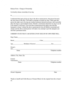 Editable Transfer Of Ownership Contract Template Pdf Sample