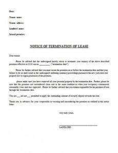 Best 30 Day Notice Lease Termination Letter Template Word Example