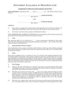 Costum Exclusive Rights Contract Template Word Example