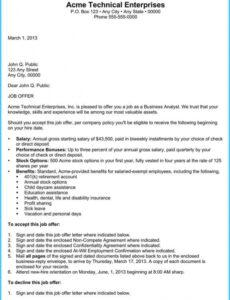 Professional Executive Offer Letter Template Excel
