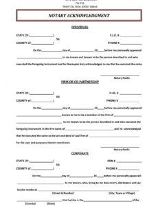 Professional Notary Statement Template Pdf Example