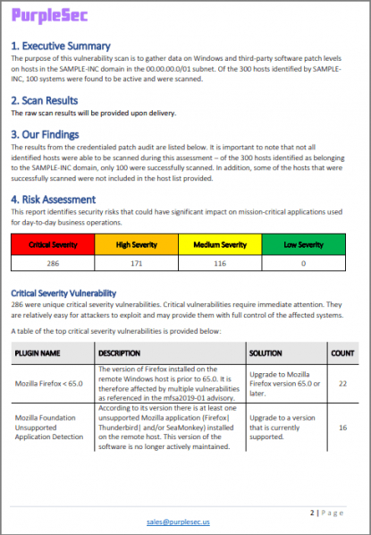 Professional Vulnerability Management Policy Template Doc Sample