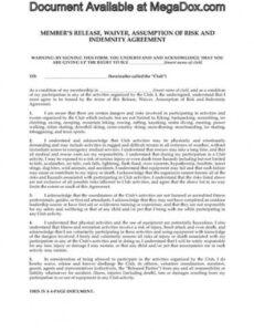 Best Sports Agent Contract Template Doc