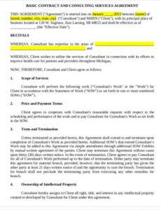 Costum Business Consulting Contract Template Doc Sample