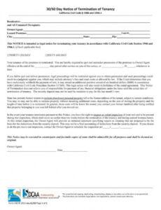 Professional 30 Day Notice Contract Termination Letter Template Word Example