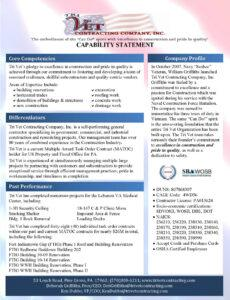 Professional Capability Statement Template For Government Contractors Excel Example