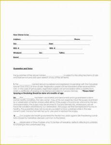 Professional Pet Adoption Contract Template Doc Example