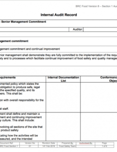 Costum Internal Audit Policy Template