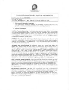 Professional Product Disclosure Statement Template  Example
