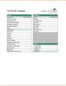 Best Personal Net Worth Statement Template Excel Sample