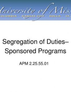 Costum Separation Of Duties Policy Template Doc Example