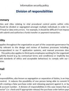 Professional Separation Of Duties Policy Template Excel Example