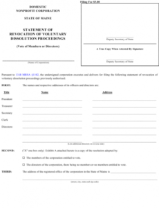 Professional Voluntary Statement Template Doc
