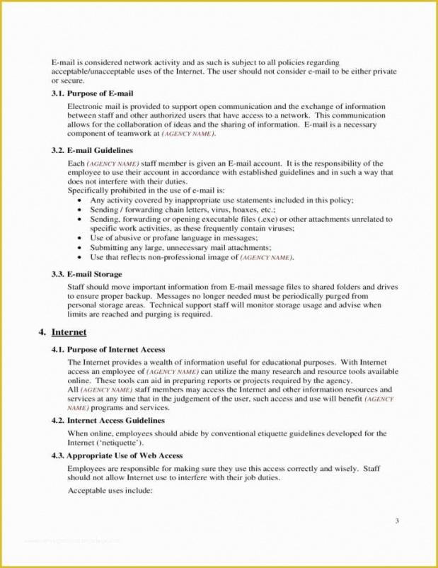 Professional Acceptable Use Policy Template Business Doc