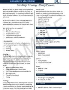 Financial Capability Statement Template Doc Example