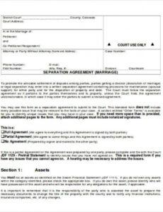 free 12 sample separation agreement templates in ms word trial separation agreement template excel